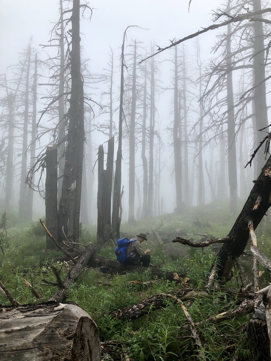 Mount Hood Timberline Trail - Finding Cell Reception in Misty Woods