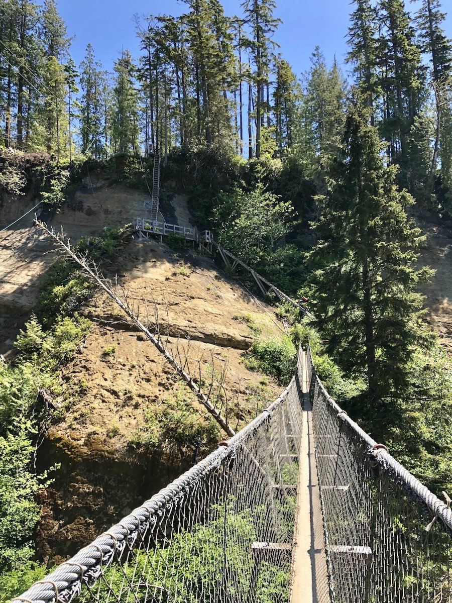 The footbridge and ladders at Adrenaline Creek on the West Coast Trail