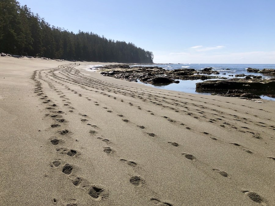 Hiker tracks in the sand, West Coast Trail