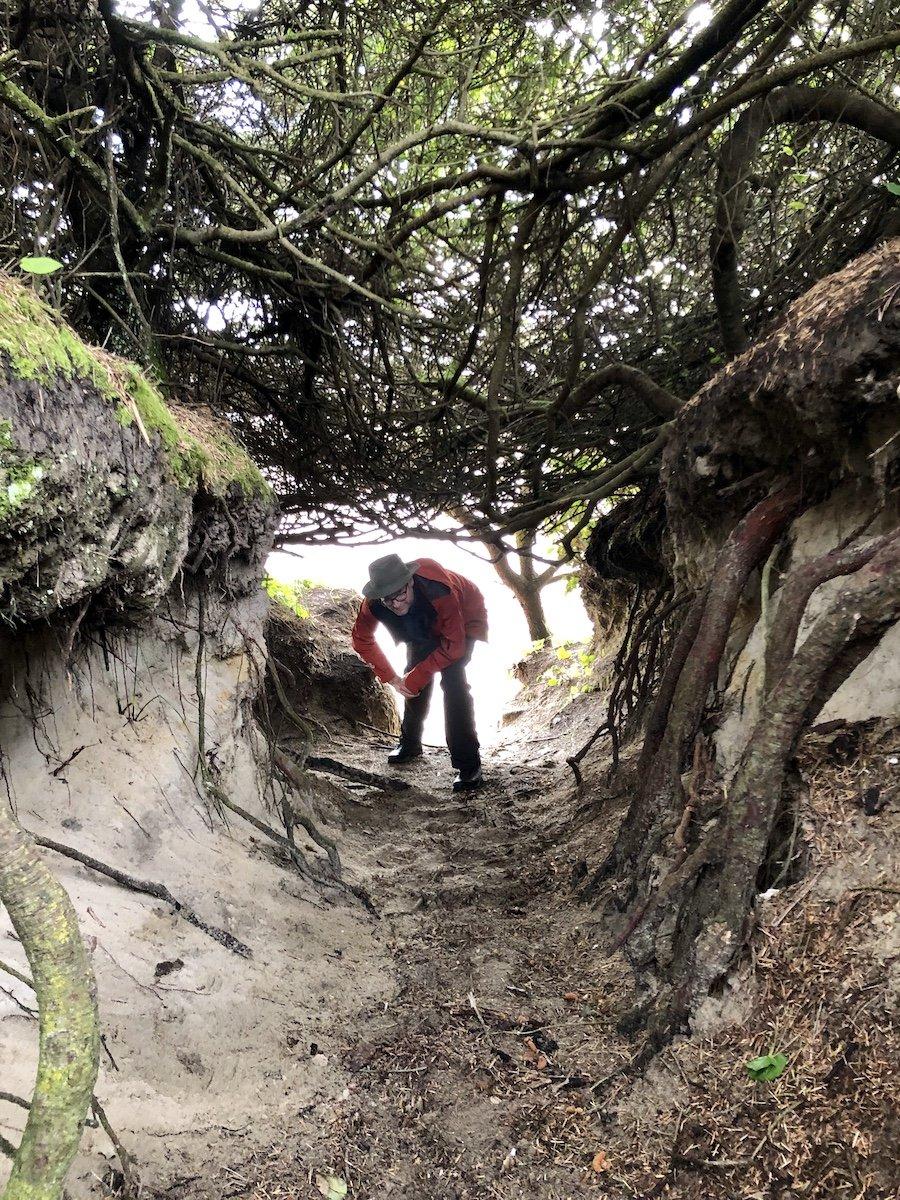 Hobbit Beach Trail