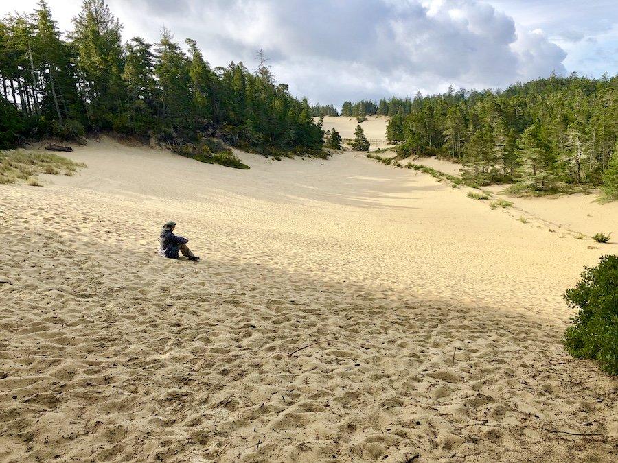 Jessie Honeyman Memorial State Park Dunes