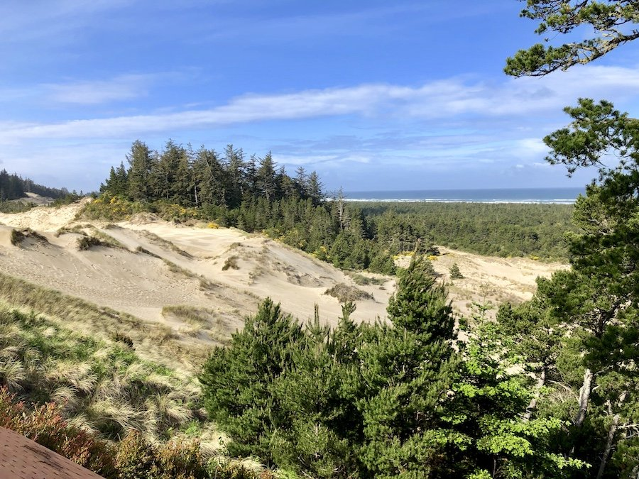 Oregon Dunes National Recreation Area Viewpoint