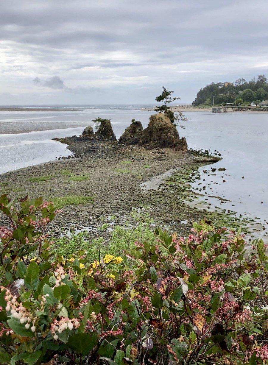 Talbot Campsite on the Oregon Coast