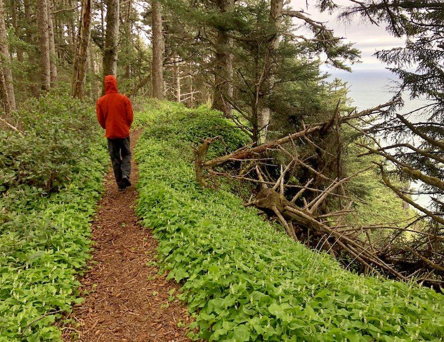 Hiking on Cape Sebastian Trail, Oregon Coast