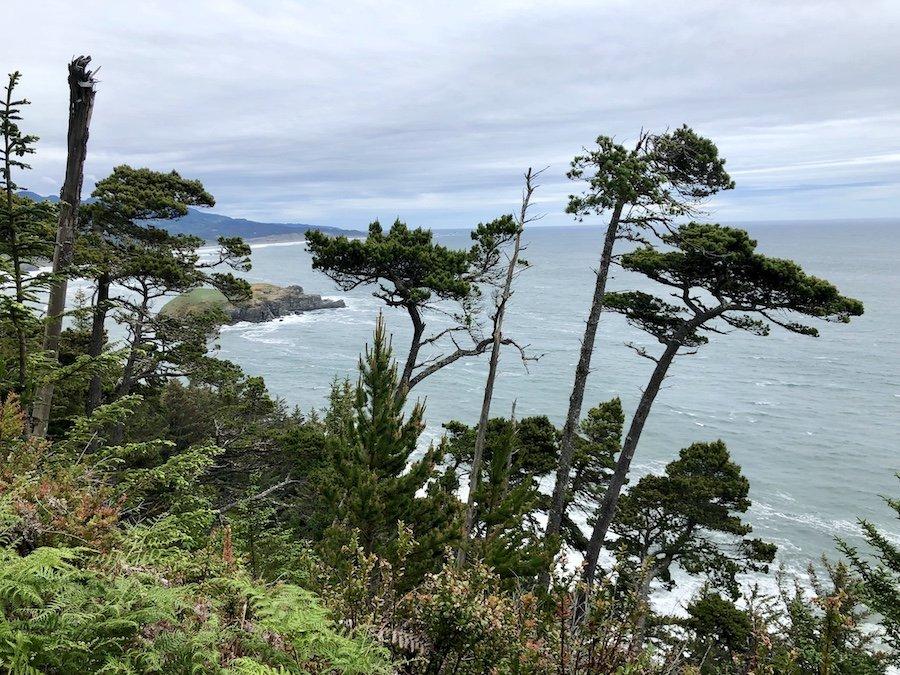 Viewpoint onCape Sebastian Trail, Oregon Coast