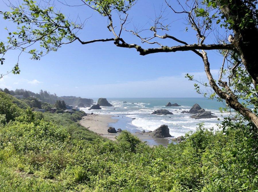 View from South Beach Trail, Harris Beach