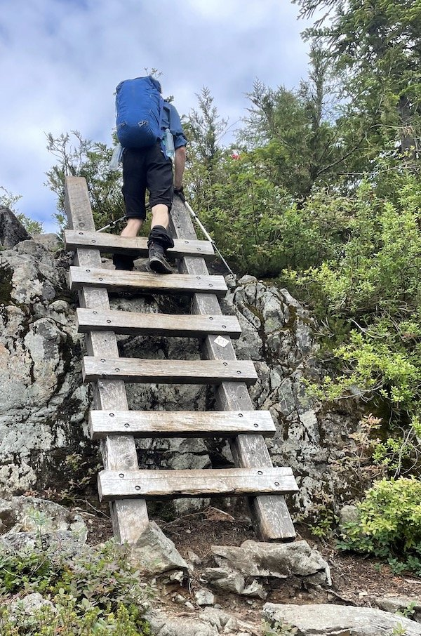 The ladder on the way to Panorama Ridge, Golden Ears trail