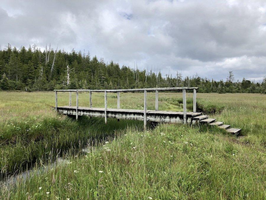 Old farming field, Cape Scott Trail, Cape Scott Provincial Park