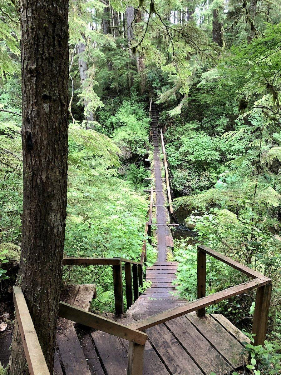 An older built wood crossings, Cape Scott Trail, Cape Scott Provincial Park