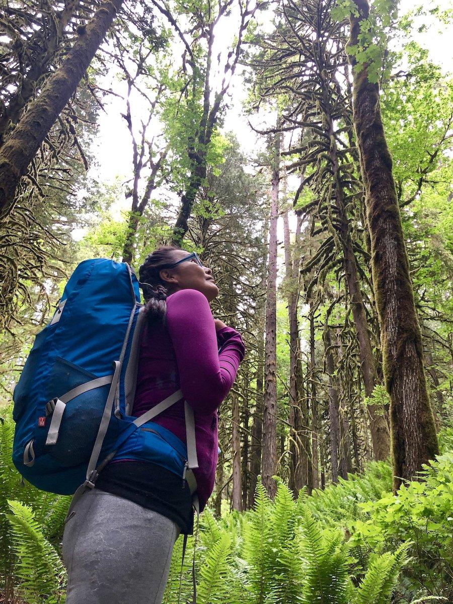 Appreciating the Lush Greenery at South Baker Lake Trail WA